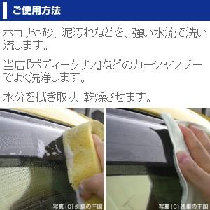 プラポリッシュset // プラスチッククリーナー コンパウンド研磨剤 プラスチックコンパウンド プラスチックポリッシュ ヘッドライト 曇り