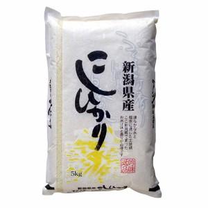 【送料無料】新潟県産コシヒカリ(北)5kg<5kg×1袋 白米 お米 28年 新米>