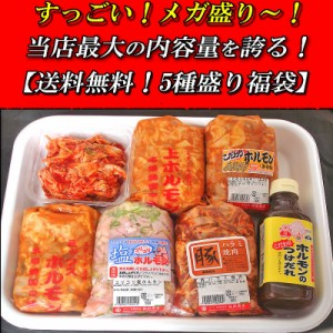【送料無料】人気ホルモンギフト5種盛り福袋【B級グルメ】焼肉 SALE