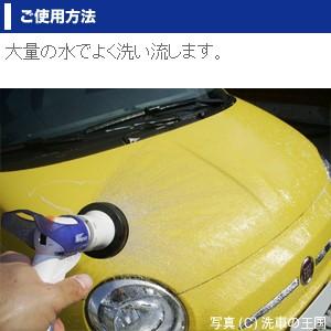 アイアンカット800ml // 鉄粉除去剤 鉄粉除去 ブレーキダスト除去 プロ仕様 ホイール 鉄粉クリーナー 簡単 ボディー 汚れ 除去剤 車 洗車
