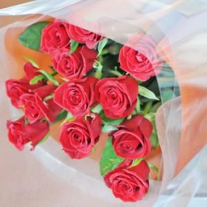 赤いバラ 15本の花束 【送料無料】