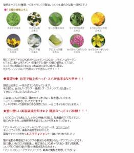 アン キャリン 美容液ノンシリコン シャンプー/コンディショナー 300ml 送料無料