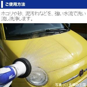 ワックスオフ150ml // 脱脂剤 シリコンオフ 脱脂 プロ仕様 ワックス除去 WAX 油落し 油取り クリーナー 洗車用品 車用 ボディー塗装面 車