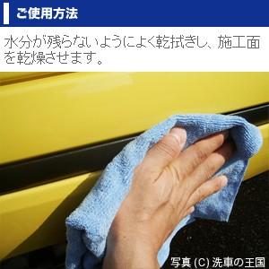 モール クリスタル50ml // コーティング剤 無塗装プラスチックモール コート剤 艶 退色 劣化クスミ キズ改善 洗車用品 車 自動車 洗車WAX
