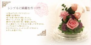 ハーフ 送料無料 プリザーブドフラワー 敬老の日 2017 プレゼント ギフト  光るバラホタル 誕生日 還暦祝い 結婚祝 結婚記念日 退職祝