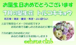 7月の誕生花★トルコアレンジ5,000円【送料無料】ネット特価!