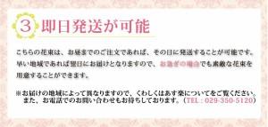 送料無料 大輪系ピンクユリ45輪の花束  お祝い プレゼント