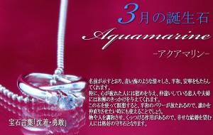 天然ダイヤ×3月誕生石アクアマリン2連リング トップ ネックレス ギフト 送料無料 クリスマス ギフト