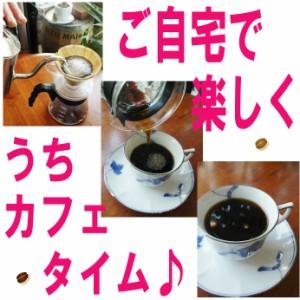 【レギュラー珈琲豆】グァテマラ エスペランサ農園/500g/シティ/フローラルな香りとバランスの良い味わい