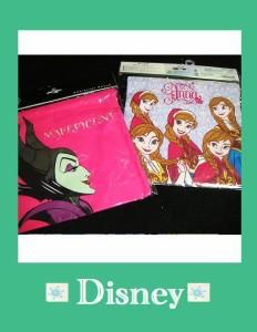 ディズニー巾着/アナと雪の女王とマレフィセント