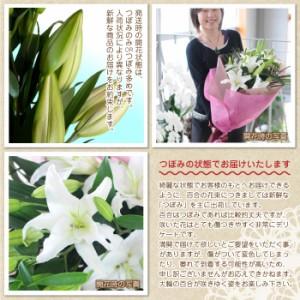 白の大輪百合20リン以上花束/ユリ/ゆり 誕生日のお花ギフト エーデルワイス花の贈り物 母の日花束