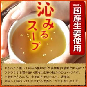 極旨絶品スープ屋さんが作った 国産生姜スープ 業務用30食 生姜 しょうが