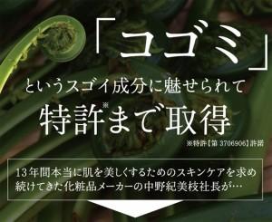 【送料無料】BBファイバー 美容サプリ コゴミサプリ つまり ポリフェノール ブドウ種子 ぶどう種子サプリ 美容カプセル 送料込み
