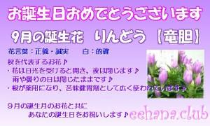 9月の誕生花りんどう【アレンジ・花束】デザイナーにおまかせ★3,500円【送料無料】ネット特価!