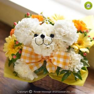 当店のロングベストセラー☆爽やかなシロクマ・アレンジ☆誕生日に大切な方へ♪萌えてサプライズ!