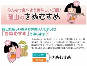 29年産 岡山県産きぬむすめ10kg【5kg×2袋】  送料無料 北海道・沖縄は700円の送料がかかります。 お米 米