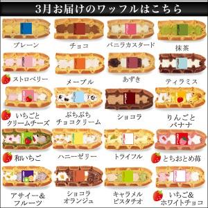 送料込 ワッフルケーキ20個入り /ギフト お菓子