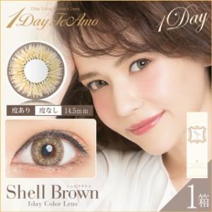 【1箱】1日使い捨てワンデイ カラコン1Day TeAmo(ティアモ)【14.5mm Shell Brown Shell Gray Chocola Black】度あり・なし【10枚入り】