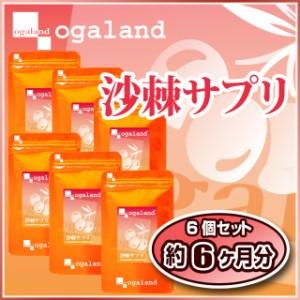 沙棘サプリ(6個セット・約6ヶ月分)3150円以上送料無料 サプリメント 激安 サジー 健康ケア サジージュース ドリンク ダイエット