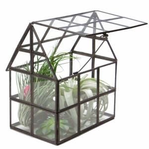 ハウス テラリウム ラティス おしゃれ ガラスケース プランター 家型  プランター 鉢 / 観葉植物 多肉植物 エアープランツ 植物