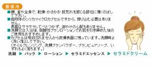 ビーバンジョア セラミドカプセルクリーム 30g【送料無料】