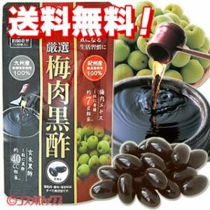 【●お取り寄せ 送料無料】厳選 梅肉黒酢 約60日分(120粒入)