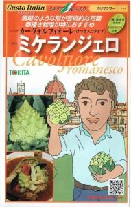 トキタ種苗 グストイタリア ミケランジェロ 約50粒