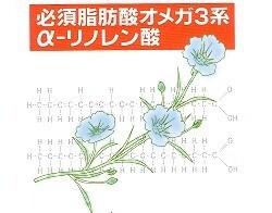 亜麻仁油フラオー 180粒 x 3袋(徳用) 【送料無料/オメガ3系脂肪酸/フラックスシードオイル】