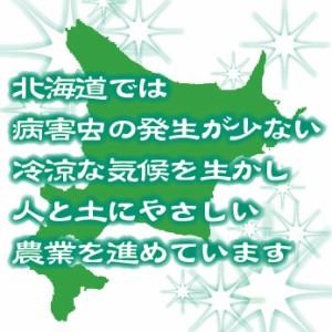 【送料無料】28年産無洗米北海道産ふっくりんこ10kg(5kg×2袋)  [お米/ご飯/ハーベストシーズン]