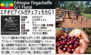 定価の10%OFF【レギュラー珈琲豆】モカアイスブレンド 500g /お徳用/夏期限定販売/アイスコーヒー、エスプレッソにも