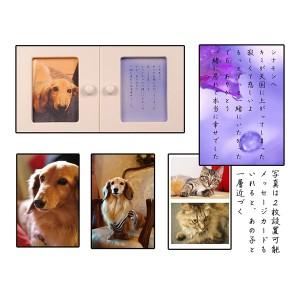 袋ごと6寸までOK【ペット仏壇・天使18号・スノーホワイト】メモリアルBOX、