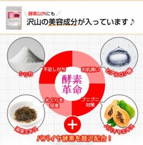 送無!!2個セット♪酵素風呂入浴剤【酵素革命スリムスパ】 ダイエット スパ 酵素 リラックス