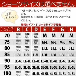 送料無料 大きいサイズのブラジャー&ショーツ3セット下着福袋インナー[B85〜H100]ブラセット/ブラ&ショーツ【予約】X-003NM