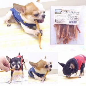 【犬 おやつ ガム】モンゴル馬アキレス細切り 40g ベストパートナー【無添加 チワワ 小型犬 犬用 ペット オヤツ】
