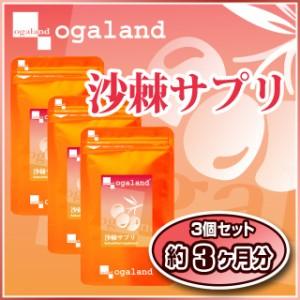 沙棘サプリ(3個セット・約3ヶ月分)3150円以上送料無料 サプリメント 激安 サジー 健康ケア サジージュース ダイエット
