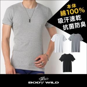 ★送料込み★グンゼ【BODYWILD】クルーネックTシャツ 3枚セット 綿100% BWB413K 【即納/送料無料】