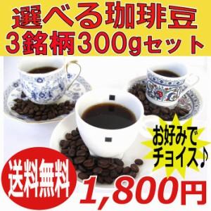 送料無料【お得セット】選べるレギュラーコーヒー豆100g×3銘柄/6種類からお好みの銘柄をチョイス!