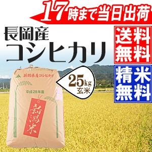 28年産長岡産コシヒカリ玄米30kg送料無料(一部地域のぞく) 【新潟県/精米無料/お米/おこめ/玄米】