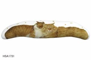 ★ インスタグラムで大人気のネコ社長こいもとジェリー&トムの抱き枕 ★