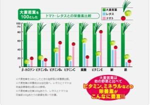 [日本薬健]25種の純国産野菜 乳酸菌×酵素 青汁 ケール 金の青汁 純国産 飲みやすい 野菜不足