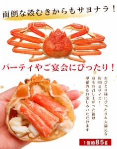 ずわいかに甲羅盛り 約85g×2個 蟹みそ入り 送料無料