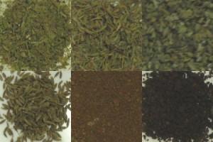 タンザニア:モンデューロドリップ式 10g 1P (7Pセット) ドリップコーヒー専用ハーブ&スパイス6種類×1gセット