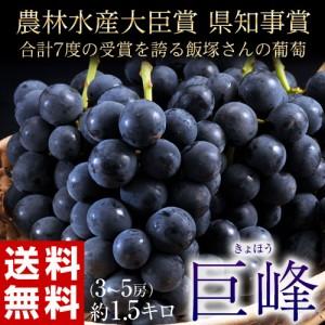 《送料無料》長野県産 飯塚さんの巨峰 約2kg(4〜6房) ※冷蔵 ☆
