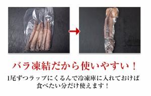 日本海産 船凍スルメイカ 1袋 5尾入り (ラウンド1尾115g〜130g) ☆
