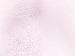 ベルトなし前板帯板(後板)薄ピンク 和装着物浴衣着付け小物