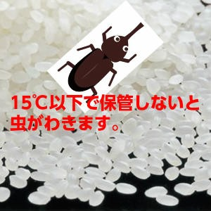 【送料無料】29年産山形県産はえぬき精米27kg【沖縄離島別途1000円加算】