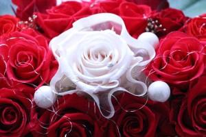 プリザーブドフラワー 送料無料 華舟/紅 バラ 花 舟 花器 贈り物 お祝い 誕生日 退職祝い 記念日 イベント 置物 飾り プリ フラワー