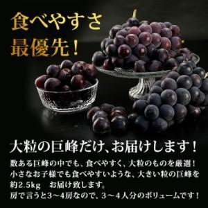 送料無料 巨峰 大粒巨峰 約2.5kg (3〜4房) きょほう 食べやすい フルーツ 旬 果物