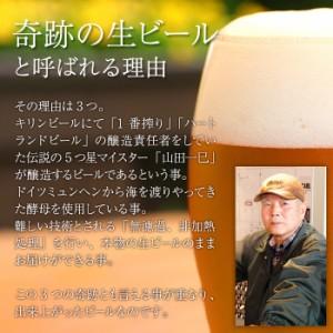 送料無料 ビール 奇跡のビール「タッチダウン」5種5本 ギフト プレゼント