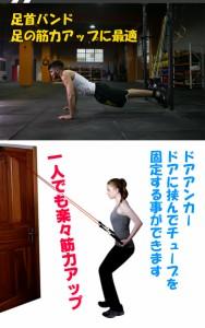トレーニングチューブ フィットネスチューブ 筋トレ ダイエット エクササイズ 体幹 5本セット 男女兼用 ジム ゴム バンド de048